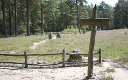Sinal de madeira esta maneira na floresta Imagens de Stock Royalty Free