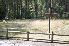 Sinal de madeira esta maneira na floresta Imagens de Stock