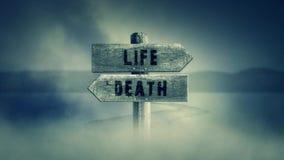 Sinal de madeira velho em um meio de uma estrada transversal com a vida ou a morte das palavras ilustração do vetor