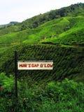 Sinal de sentido em montanhas Fotografia de Stock