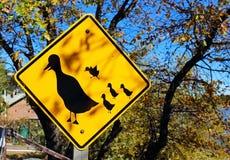 Sinal de tráfego olhar para fora para o cruzamento das famílias do pato imagens de stock royalty free