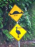 Sinal do Cassowary - Queensland, Austrália foto de stock