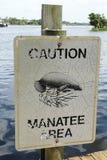 Sinal do cuidado do Manatee Imagem de Stock Royalty Free