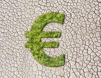 Sinal do Euro da grama em fundo rachado da terra Fotos de Stock