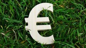 Sinal do Euro da madeira no fundo da grama Imagens de Stock Royalty Free