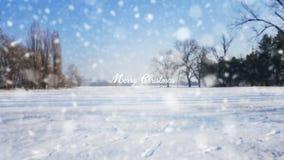 Sinal do Feliz Natal no fundo branco do fundo da neve Imagens de Stock
