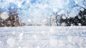 Sinal do Feliz Natal no fundo branco do fundo da neve Imagem de Stock