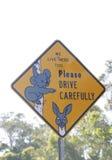 Sinal do Koala e do canguru fotos de stock royalty free