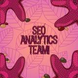 Sinal do texto que mostra Seo Analytics Team Exibição conceptual da foto que faz o processo que afeta a foto em linha da estrela  ilustração royalty free