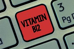 Sinal do texto que mostra a vitamina B12 Grupo conceptual da foto de substâncias essenciais para o trabalho de determinadas enzim foto de stock royalty free