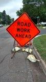 Sinal do trabalho de estrada adiante Foto de Stock