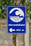 Sinal do tsunami Imagem de Stock Royalty Free