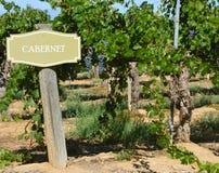 Sinal do vinho de Cabernet Foto de Stock