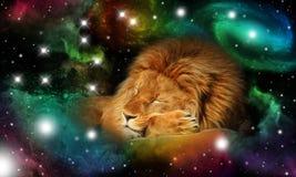 Sinal do zodíaco leo Imagens de Stock Royalty Free