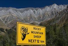 Sinal dos carneiros de montanha rochosa imagens de stock