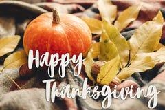 Sinal feliz do texto da ação de graças na abóbora de outono com le colorido Imagem de Stock