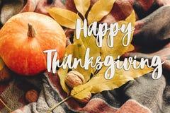 Sinal feliz do texto da ação de graças na abóbora de outono com pasto colorido Imagens de Stock Royalty Free