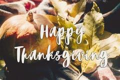 Sinal feliz do texto da ação de graças na abóbora de outono com pasto colorido Foto de Stock Royalty Free