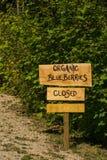 Sinal orgânico do mirtilo Foto de Stock Royalty Free