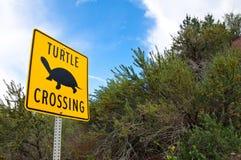 Sinal original do cruzamento da tartaruga Fotografia de Stock Royalty Free