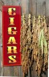 Sinal para as folhas de suspensão próximas do tabaco dos charutos Imagem de Stock Royalty Free