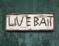 Sinal velho da madeira de vidoeiro para Live Bait foto de stock