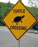 Sinal W do cruzamento da tartaruga Stockbridge miliampère Berkshires Imagem de Stock Royalty Free