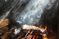 Sinalau Bakas ou javali fumado Imagens de Stock