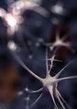 Sinapse Imagem de Stock Royalty Free