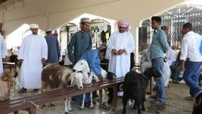 Sinaw, Omán - diciembre de 2015: Gente árabe que compra y que vende animales en el mercado de Sinaw almacen de metraje de vídeo