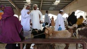 Sinaw, Oman - Dezember 2015: Arabische Leute, die Tiere in Sinaw-Markt kaufen und verkaufen stock video footage