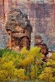 sinawava寺庙zion 库存照片