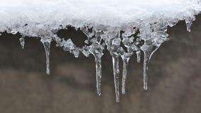 Sincelos do gelo Fotos de Stock