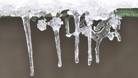 Sincelos do gelo Fotos de Stock Royalty Free