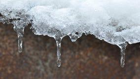 Sincelos do gelo Fotografia de Stock