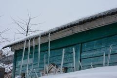 Sincelos longos que penduram de um telhado de madeira da casa à neve Imagens de Stock