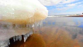 Sincelos na neve de derretimento no Lago Superior na primavera Imagem de Stock