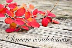 Sincere condolences Royalty Free Stock Image