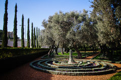 Sincronicity. The Bahá`í gardens,view over the top gardens Royalty Free Stock Photography