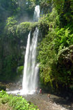 Sindang吉拉Lombok瀑布 免版税库存图片