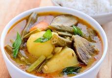 Sindhi meal- Kadhi chawal Stock Photography