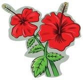 Sinensis de rosa do hibiscus ilustração stock