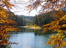 Sinevir湖在喀尔巴阡山脉 免版税库存照片