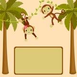 Sing board with two cute monkeys. Monkeys in the jungle blank sing board Royalty Free Stock Photo