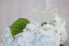 Sing of butterfly and blue flowers Royalty Free Stock Images