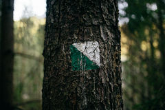 The sing of easy turistic route on the tree with green and white Stock Images
