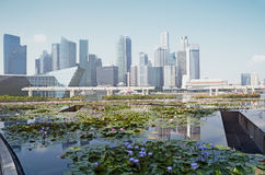 Singapor the `City in a Garden` Royalty Free Stock Photo