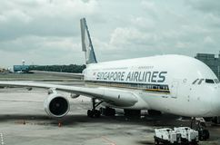 SIngapore Airline at Changi Airport Terminal 1. stock image