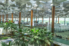 Singapore Airport Stock Images