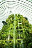 Cloud Forest waterfall, Gardens by the Bay, Singapore Royalty Free Stock Image
